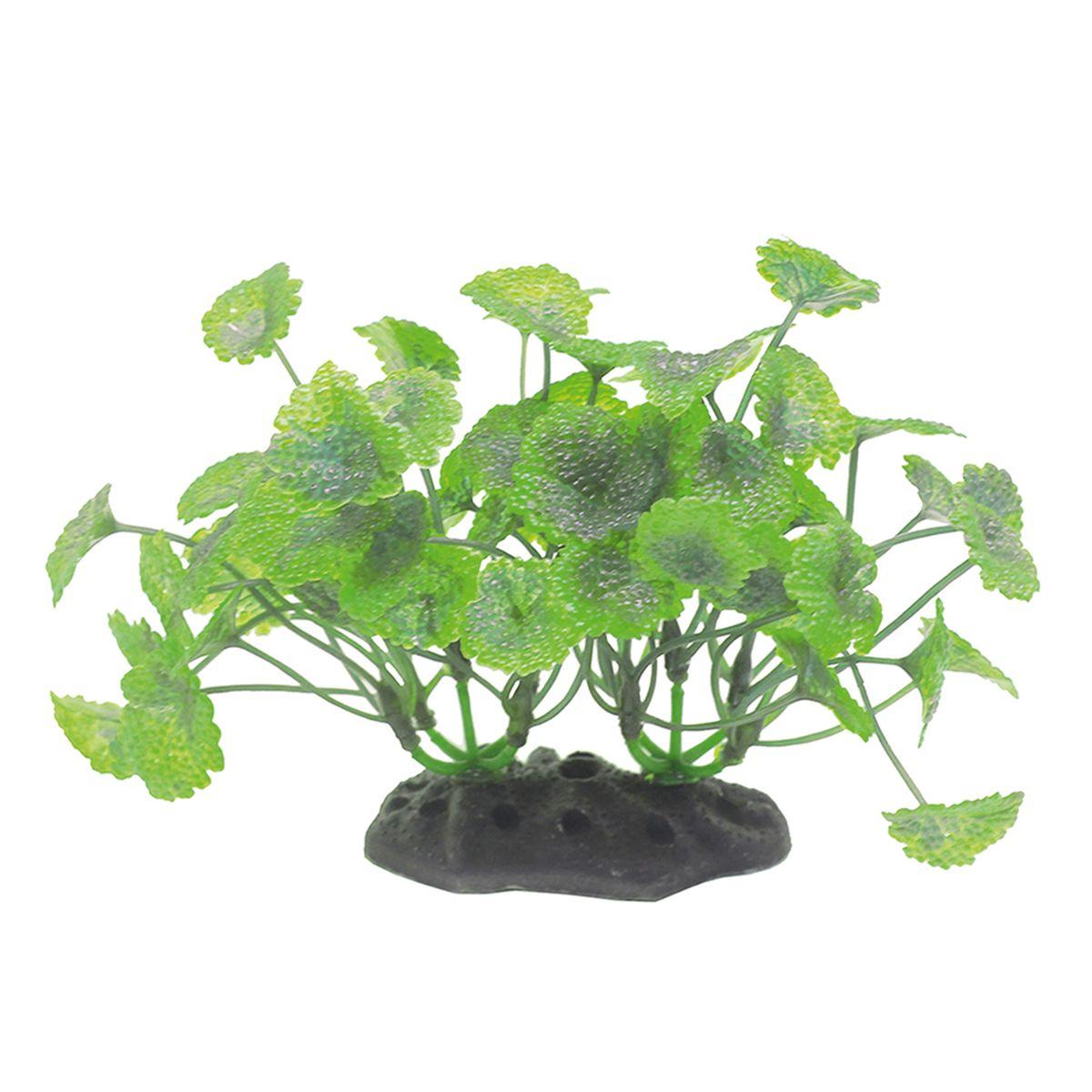 Растение для аквариума ArtUniq Щитолистник, высота 10-12 смART-1192104Растение для аквариума ArtUniq Щитолистник, высота 10-12 см
