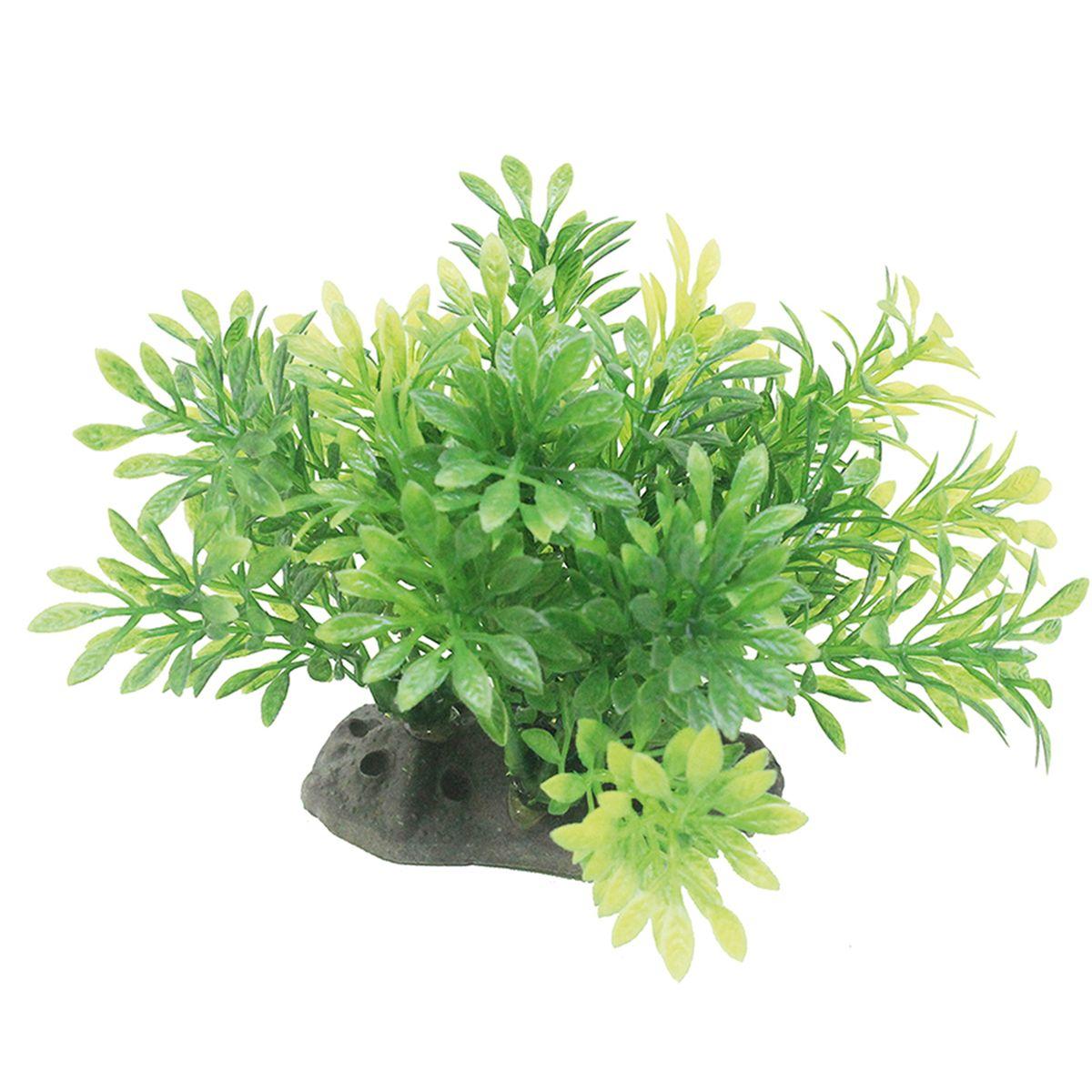 Растение для аквариума ArtUniq Микрантемум, высота 10-12 смART-1192107Растение для аквариума ArtUniq Микрантемум, высота 10-12 см