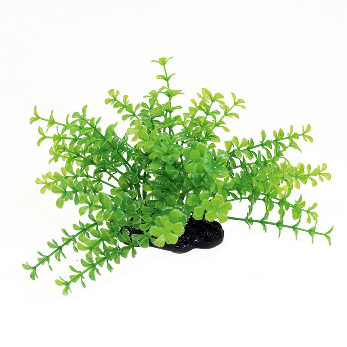 Растение для аквариума ArtUniq Прозерпинака зеленая, высота 10-12 смART-1192110Растение для аквариума ArtUniq Прозерпинака зеленая, высота 10-12 см