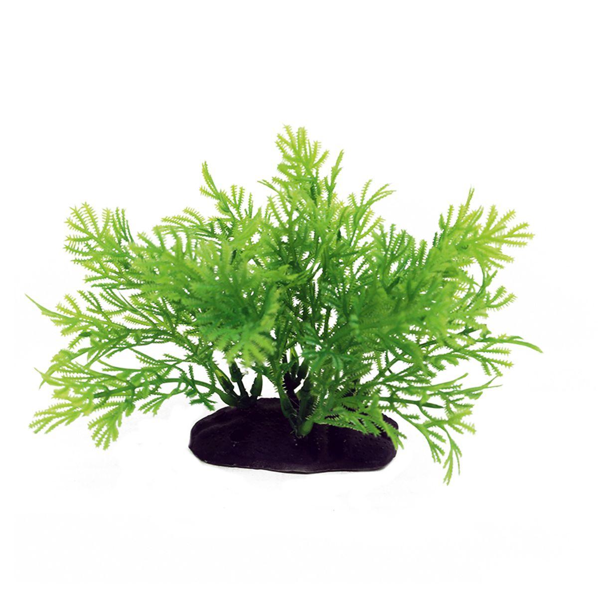 Растение для аквариума ArtUniq Хоттония, высота 10-12 смART-1192114Растение для аквариума ArtUniq Хоттония, высота 10-12 см