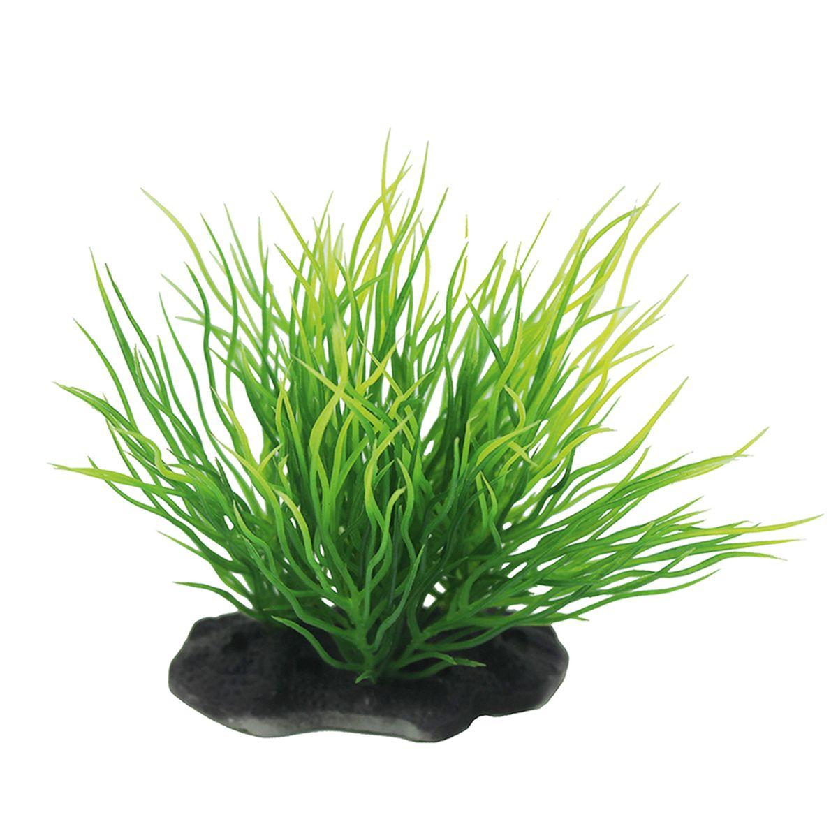 Растение для аквариума ArtUniq Пузырчатка, высота 10-12 смART-1192116Растение для аквариума ArtUniq Пузырчатка, высота 10-12 см