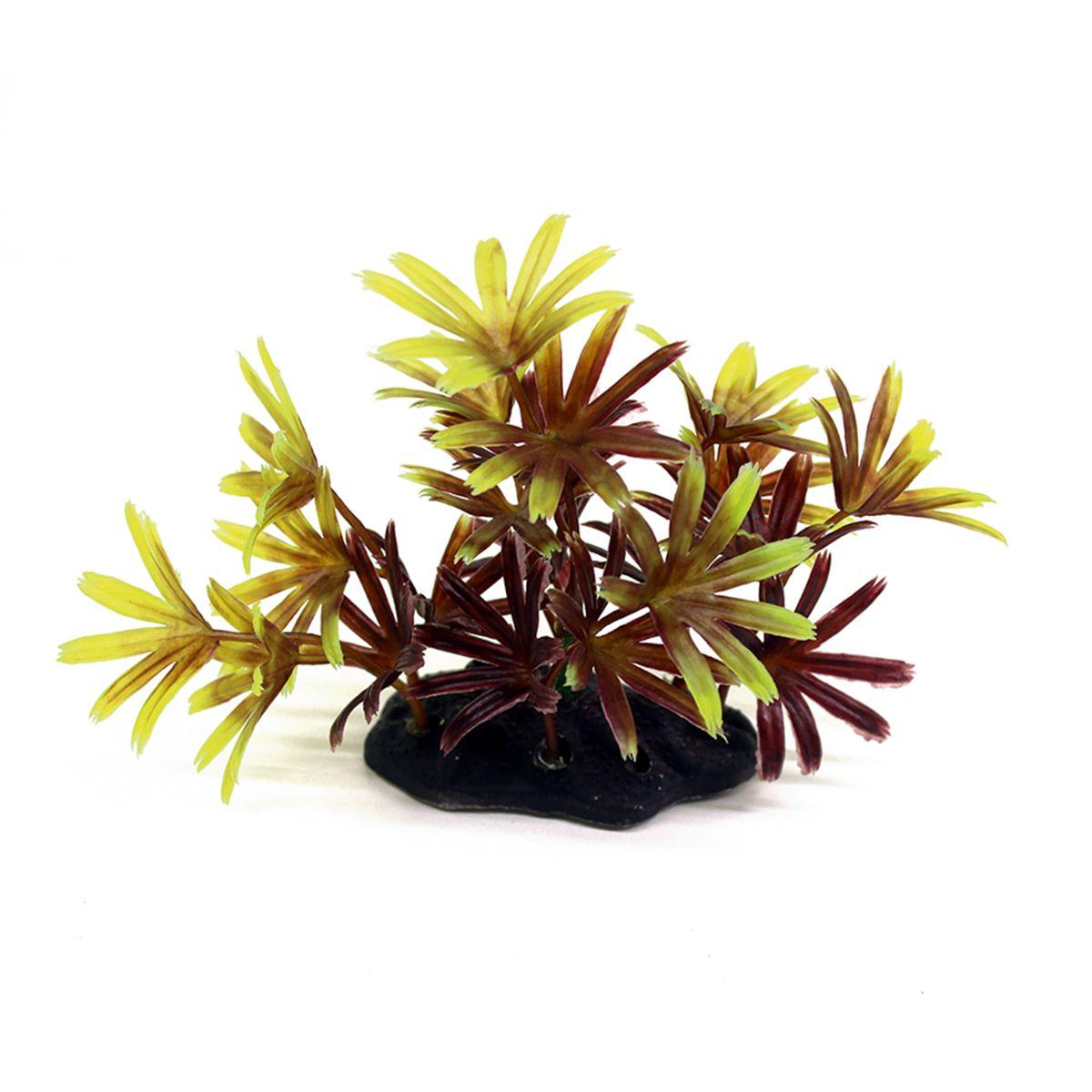 Растение для аквариума ArtUniq Бамбуза красно-желтая, высота 10-12 смART-1192118Растение для аквариума ArtUniq Бамбуза красно-желтая, высота 10-12 см