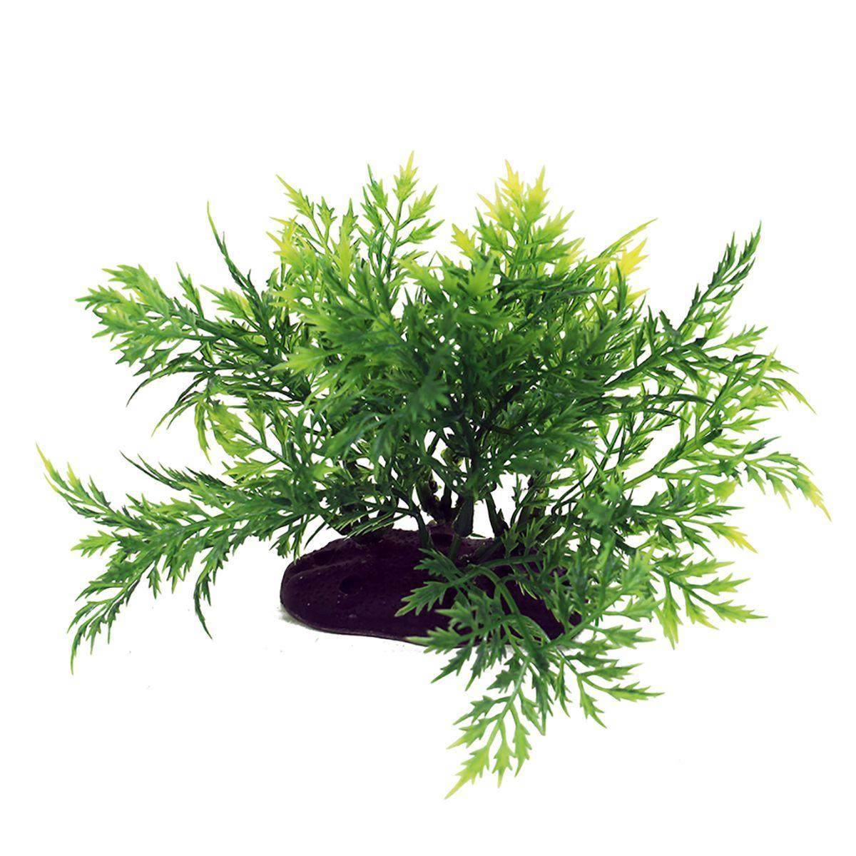 Растение для аквариума ArtUniq Болбитис, высота 10-12 смART-1192121Растение для аквариума ArtUniq Болбитис, высота 10-12 см