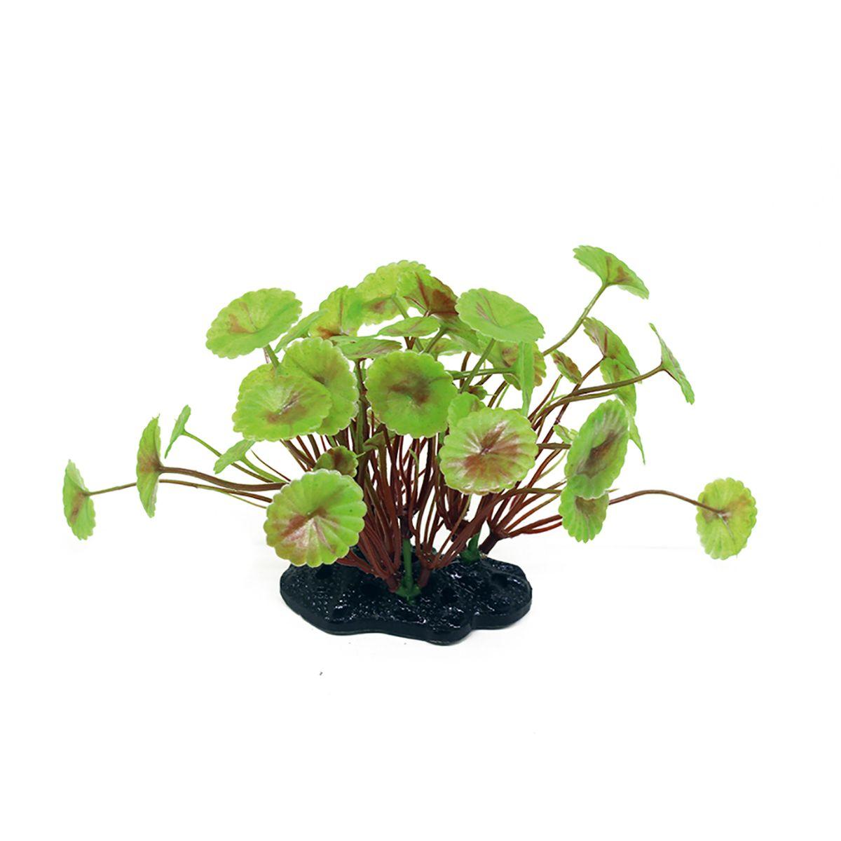 Растение для аквариума ArtUniq Щитолистник вертикальный, высота 10-12 смART-1192122Растение для аквариума ArtUniq Щитолистник вертикальный, высота 10-12 см