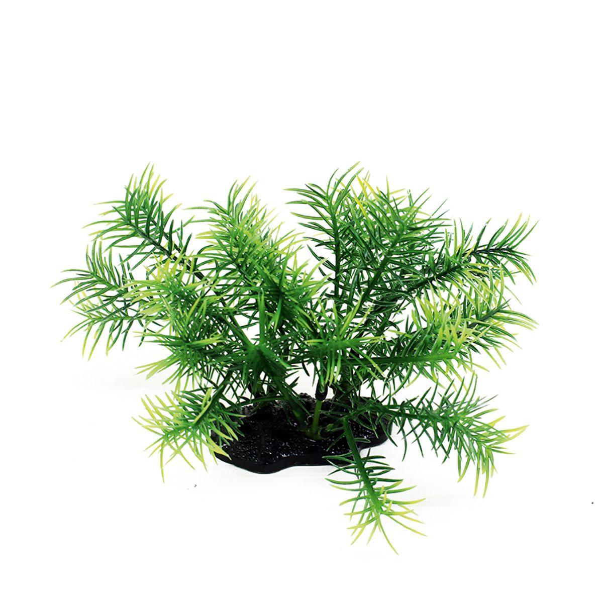 Растение для аквариума ArtUniq Погостемон Эректус, высота 10-12 смART-1192124Растение для аквариума ArtUniq Погостемон Эректус, высота 10-12 см
