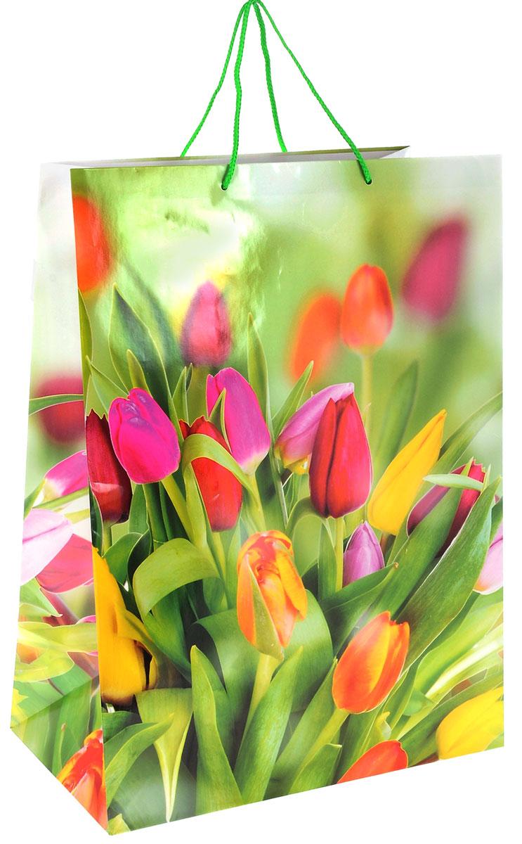 Пакет подарочный МегаМАГ Цветы. Тюльпаны, 41 х 56 х 24 см. 911/912 XXL911/912 XXL_тюльпаныПодарочный пакет МегаМАГ, изготовленный из плотной ламинированной бумаги, станет незаменимым дополнением к выбранному подарку. Для удобной переноски на пакете имеются ручки-шнурки. Подарок, преподнесенный в оригинальной упаковке, всегда будет самым эффектным и запоминающимся. Окружите близких людей вниманием и заботой, вручив презент в нарядном, праздничном оформлении.