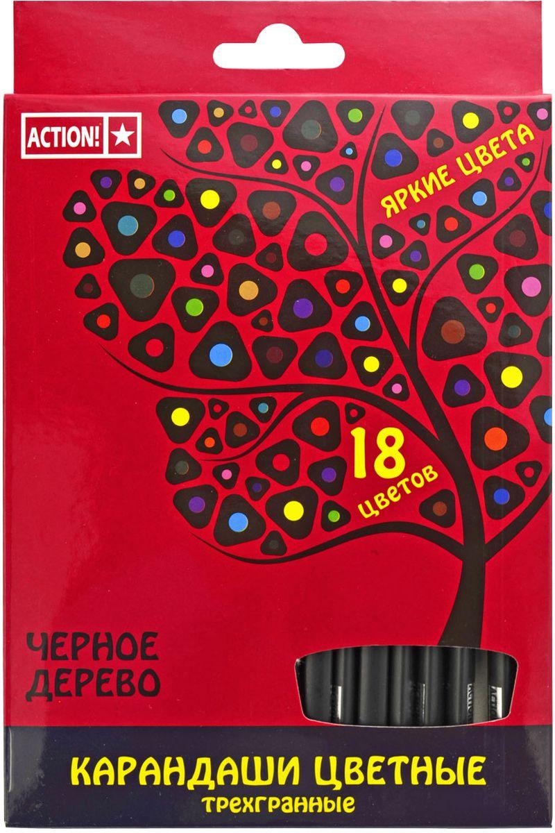 Action! Набор цветных карандашей Черное дерево 18 цветовACP505-18Трехгранный корпус. Выполнены из черного дерева. 18 цветов. В картонной коробке с европодвесом