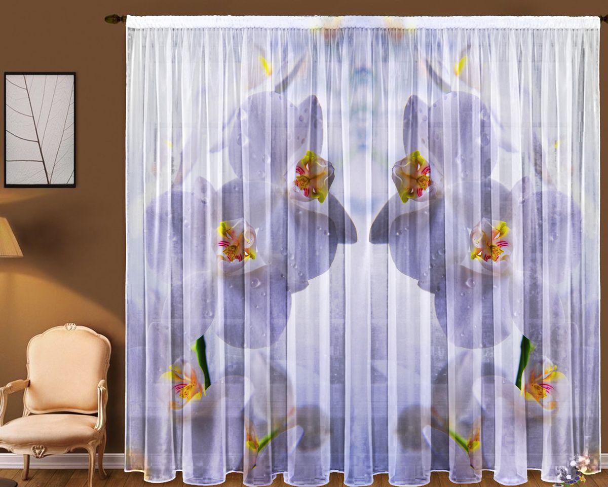 Комплект фототюлей Zlata Korunka Белая орхидея, на ленте, высота 270 см21125Фототюль - это новинка в мире фотоштор. Для производства используется шифоновая ткань высочайшего качества. Уход: Бережная стирка при 30 градусах, деликатный отжим, отбеливание запрещено. Комплектация и размер: 2 полотна (каждое – шир.145 х выс.270) соединенных поверху, одной шторной лентой. Оттенок изделия может отличаться от представленного на сайте в силу особенностей цветопередачи фототехники и Вашего монитора.