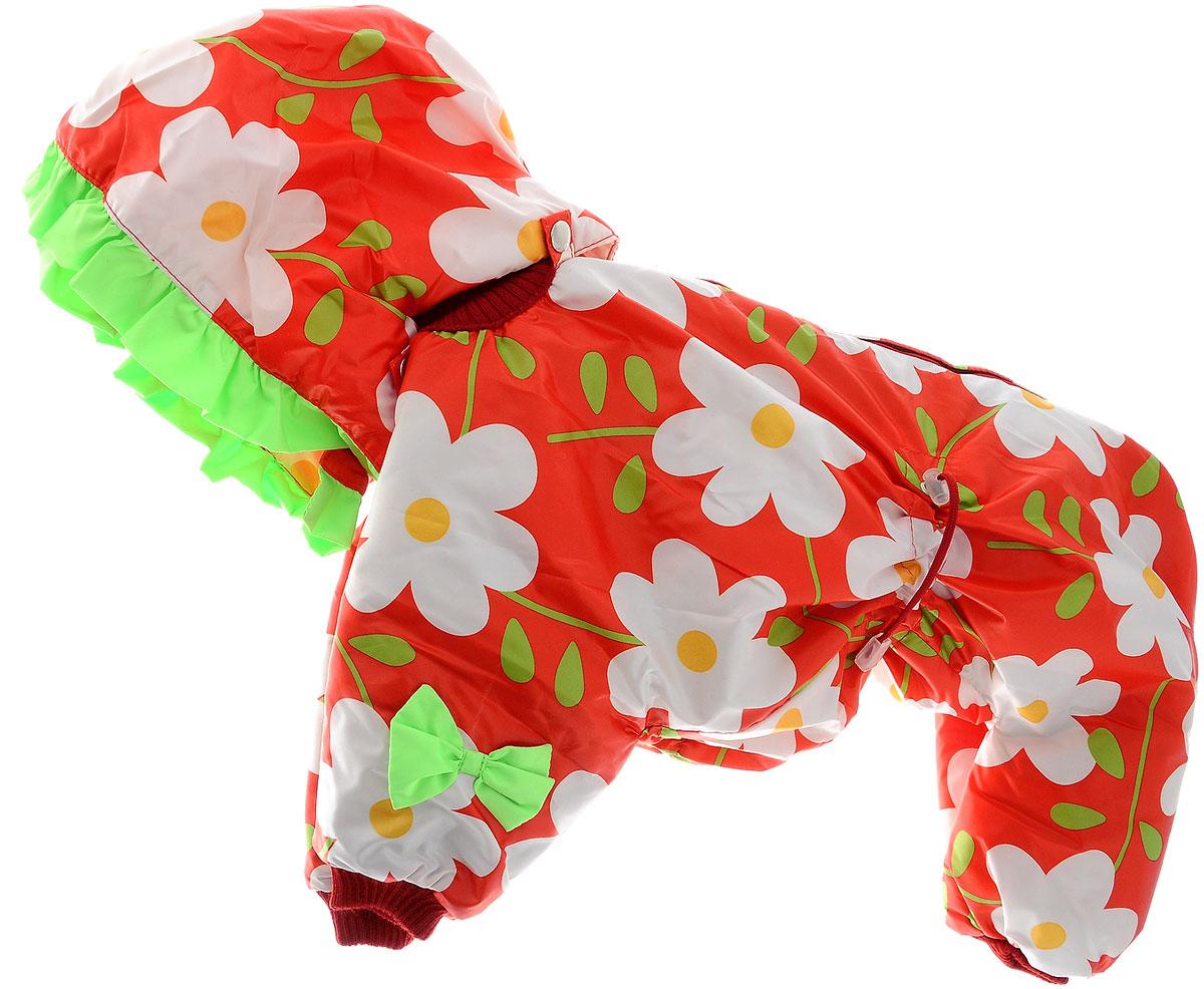 Комбинезон для собак Kuzer-Moda Мариска, утепленный, для девочки, цвет: белый, красный, салатовый. Размер XXLKZ003448Утепленный комбинезон для собак Kuzer-Moda Мариска, украшенный однотонными рюшами и забавными бантиками на передних лапках и капюшоне, отлично подойдет для прогулок в холодное время года. Комбинезон изготовлен из плащевки с утеплителем из синтепона, который сохранит тепло даже в сильные морозы. Комбинезон с капюшоном застегивается на кнопки и липучки, благодаря чему его легко надевать и снимать. Капюшон пристегивается при помощи кнопок. Низ рукавов и брючин оснащен трикотажными манжетами, которые мягко обхватывают лапки, не позволяя просачиваться холодному воздуху. На пояснице комбинезон затягивается на шнурок- кулиску. Благодаря такому комбинезону простуда не грозит вашему питомцу. Длина по спинке 36 см.