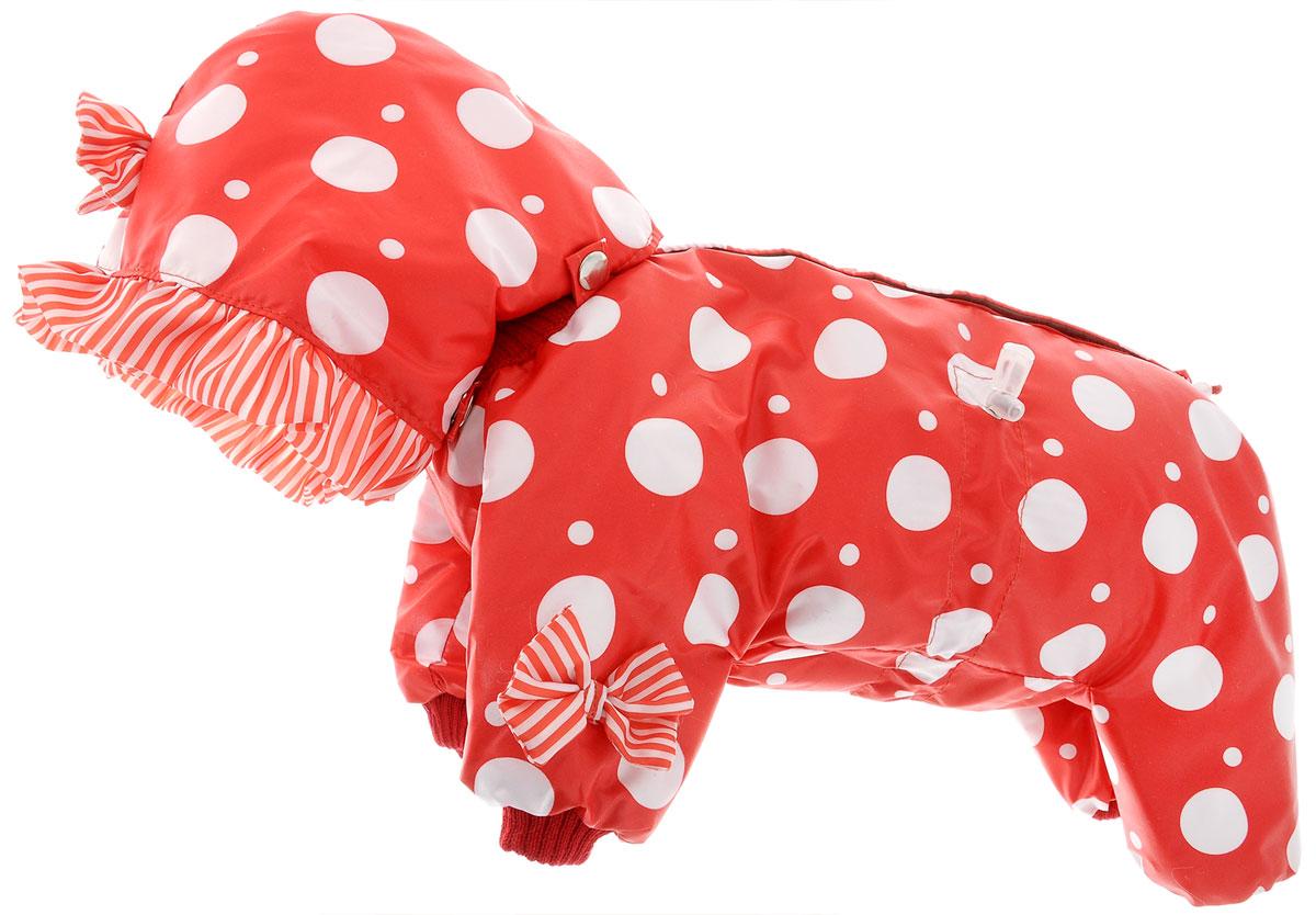 Комбинезон для собак Kuzer-Moda Мариска, утепелнный, для девочки, цвет: красный, белый. Размер SKZ001815Утепленный комбинезон для собак Kuzer-Moda Мариска, украшенный рюшами и забавными бантиками на передних лапках и капюшоне, отлично подойдет для прогулок в холодное время года. Комбинезон изготовлен из плащевки с утеплителем из синтепона, который сохранит тепло даже в сильные морозы. Комбинезон с капюшоном застегивается на кнопки и липучки, благодаря чему его легко надевать и снимать. Капюшон пристегивается при помощи кнопок. Низ рукавов и брючин оснащен трикотажными манжетами, которые мягко обхватывают лапки, не позволяя просачиваться холодному воздуху. На пояснице комбинезон затягивается на шнурок-кулиску. Благодаря такому комбинезону простуда не грозит вашему питомцу. Длина по спинке 28 см.
