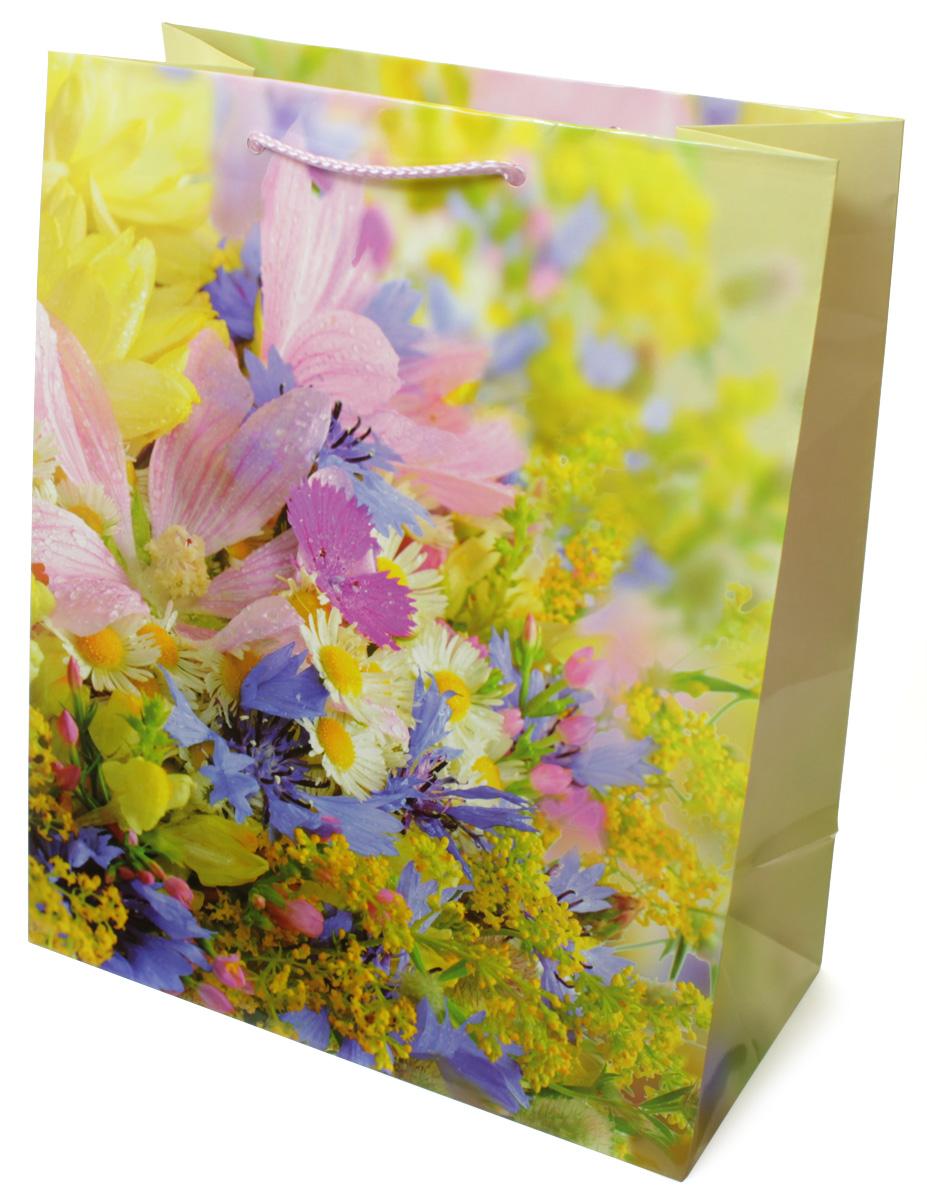 Пакет подарочный МегаМАГ Цветы, 26,4 х 32,7 х 13,6 см. 3120 L3120 LПодарочный пакет МегаМАГ, изготовленный из плотной ламинированной бумаги, станет незаменимым дополнением к выбранному подарку. Для удобной переноски на пакете имеются ручки-шнурки. Подарок, преподнесенный в оригинальной упаковке, всегда будет самым эффектным и запоминающимся. Окружите близких людей вниманием и заботой, вручив презент в нарядном, праздничном оформлении.