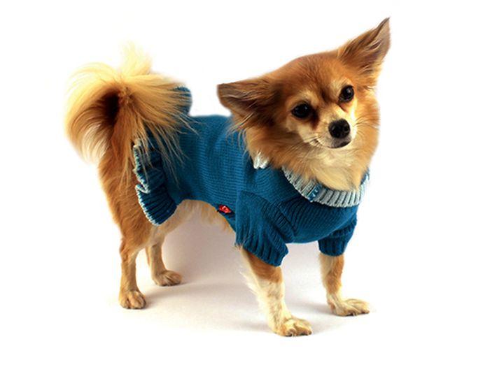 Платье для собак Каскад Вязаное. Цветок, для девочки, цвет: бирюзовый. Размер M52000536