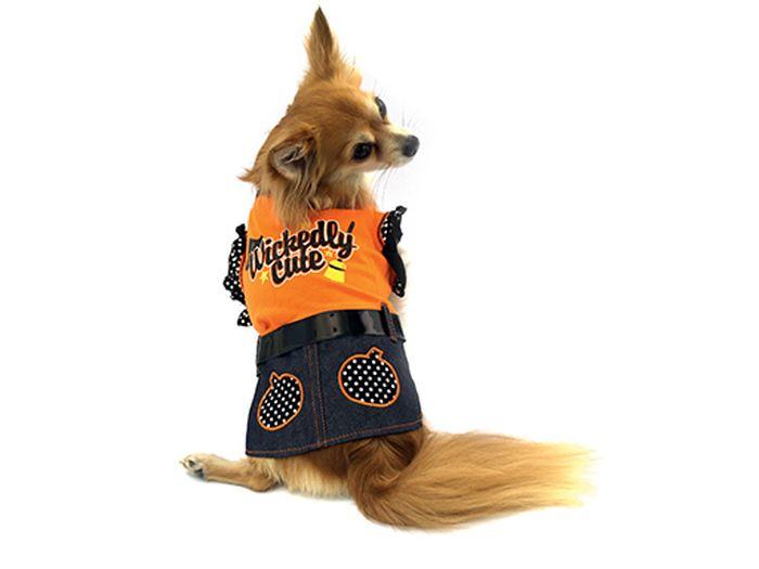 Платье для собак Каскад Halloween, для девочки, цвет: оранжевый. Размер M52000704