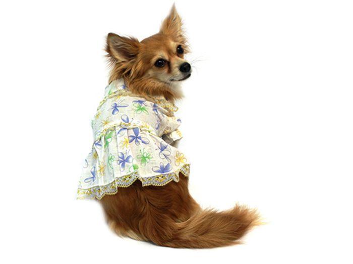 Платье для собак Каскад Цветы, для девочки, цвет: золотой, белый. Размер XL52000807