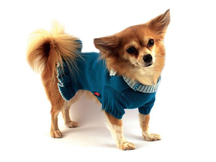 Платье для собак Каскад Вязаное. Цветок, для девочки, цвет: бирюзовый. Размер L52001045