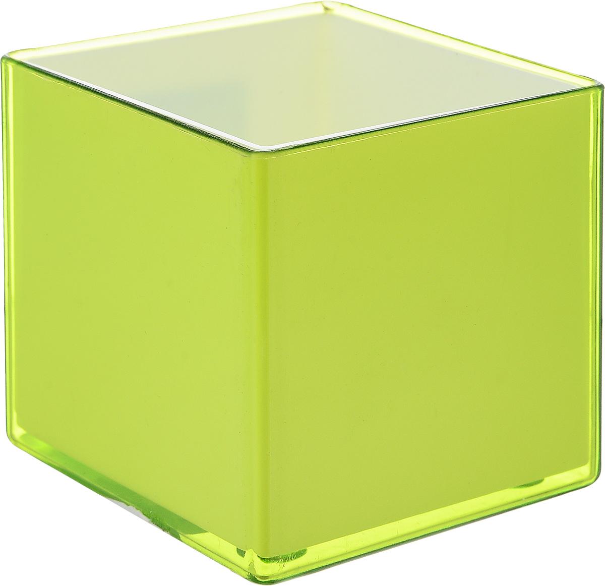 Кашпо JetPlast Мини куб, на магните, цвет: зеленый, 6 x 6 x 6 см4612754050482Кашпо JetPlast Мини куб предназначено для украшения любого интерьера. Благодаря магнитной ленте, входящей в комплект, вы можете разместить его не только на подоконнике, столе или иной поверхности, а также на холодильнике и любой другой металлической поверхности, дополняя привычные вещи новыми дизайнерскими решениями. Кашпо можно использовать не только под цветы, но и как подставку для ручек, карандашей и прочих канцелярских мелочей. Размеры кашпо: 6 х 6 х 6 см.