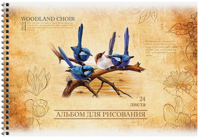 ArtSpace Альбом для рисования Винтаж Птицы 24 листовА24спВЛ_9157Альбом для рисования ArtSpace Винтаж. Птицы будет вдохновлять ребенка на творческий процесс. Альбом изготовлен из белоснежной бумаги с яркой обложкой из плотного картона, оформленной изображением птиц. Внутренний блок альбома состоит из 24 листов бумаги. Способ крепления - гребень. Высокое качество бумаги позволяет рисовать в альбоме карандашами, фломастерами, акварельными и гуашевыми красками. Во время рисования совершенствуются ассоциативное, аналитическое и творческое мышления. Занимаясь изобразительным творчеством, малыш тренирует мелкую моторику рук, становится более усидчивым и спокойным.