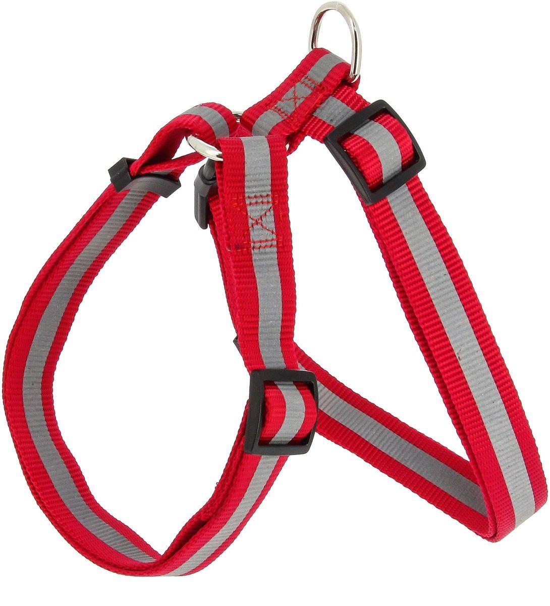 Шлейка для собак Каскад, со светоотражателем, цвет: красный, ширина 10 мм, длина 20-30 см01210013-02