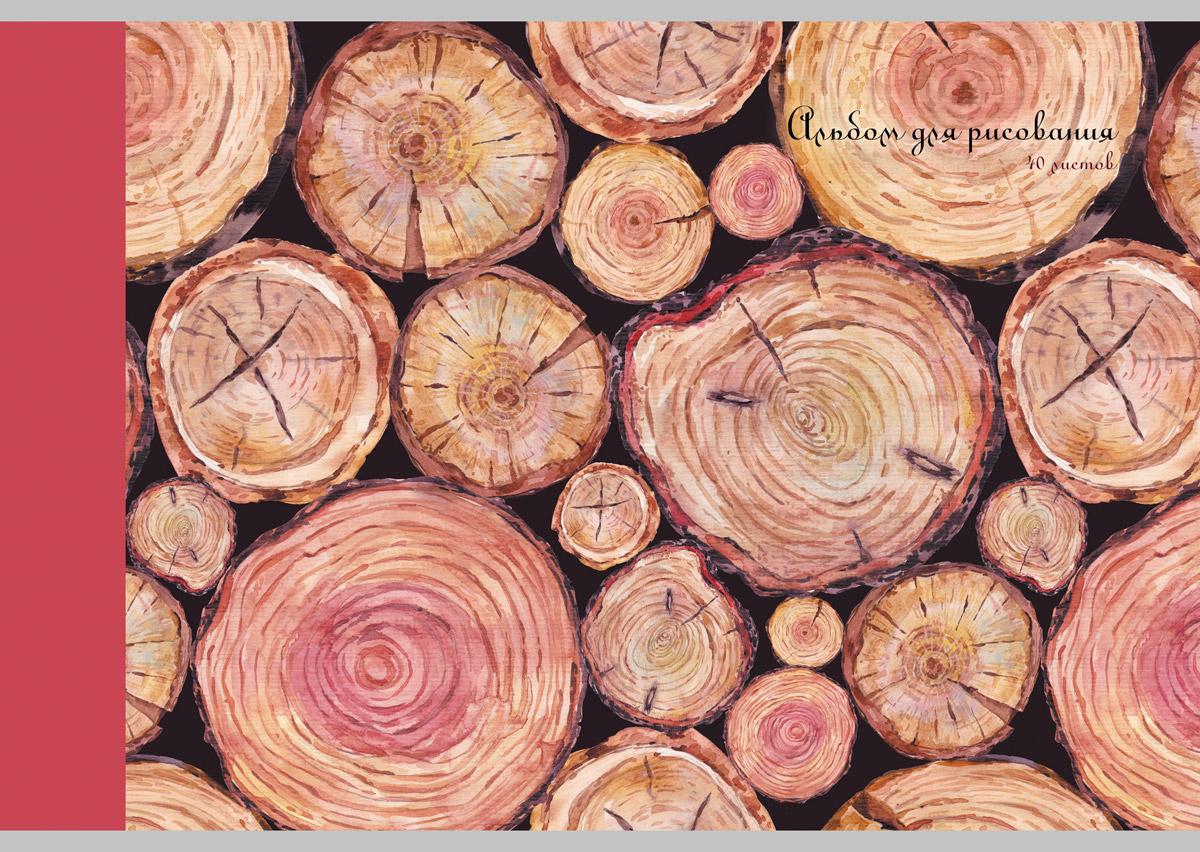 Канц-Эксмо Альбом для рисования Акварельная графика 40 листовАЛ401487Альбом для рисования 40 листов на скрепке. Обложка из мелованного картона с матовой ламинацией и выборочным лаком. Бумага офсет 120г/м2.