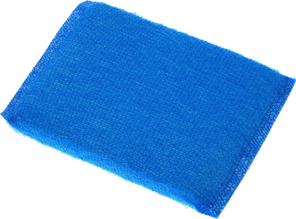 Губка для мытья посуды Home Queen, в ворсистой сетке, цвет: синий38_синийГубка для мытья посуды Home Queen изготовлена из поролона в ворсистой сетке из полипропиленовой металлизированной нити. Предназначена для мытья посуды и кухонных поверхностей. Удобна в применении. Позволяет экономить моющее средство, благодаря структуре поролона, который дает много пены при использовании. Материал: полипропиленовая металлизированная нить, поролон. Размер губки: 12 х 9 х 2 см.