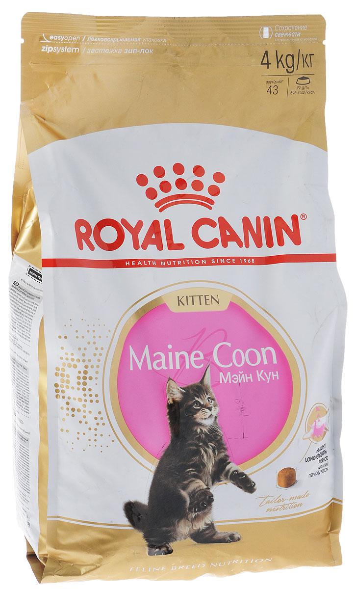 Корм сухой Royal Canin Maine Coon Kitten, для котят породы мейн-кун в возрасте от 3 до 15 месяцев, 4 кг499040-543040Сухой корм Royal Canin Maine Coon Kitten - полнорационный корм для котят породы мейн-кун в возрасте от 3 до 15 месяцев. Фаза роста котят мейн-куна в силу их уникального экстерьера более продолжительна, чем у кошек других пород. Удивительный факт: трехмесячный мейн-кун весит около 2 кг - почти вдвое больше, чем котята других пород в этом возрасте! Длительный период роста. В силу своей особой комплекции котенок породы мейн-кун достигает зрелости только к 15 месяцам или даже позже. Длительный период роста означает, что диета для котят должна отвечать их специфическим потребностям в энергии: это обеспечит гармоничное и сбалансированное развитие. Для того чтобы обеспечить максимально сбалансированное развитие, следует заказать онлайн специальный корм, подходящий для этой породы. Чемпион по весу среди котят. Уже очень скоро котенок мейн-куна опережает по весу своих сверстников - представителей других пород кошек. Постепенно формируются массивные кости и мощные мышцы....