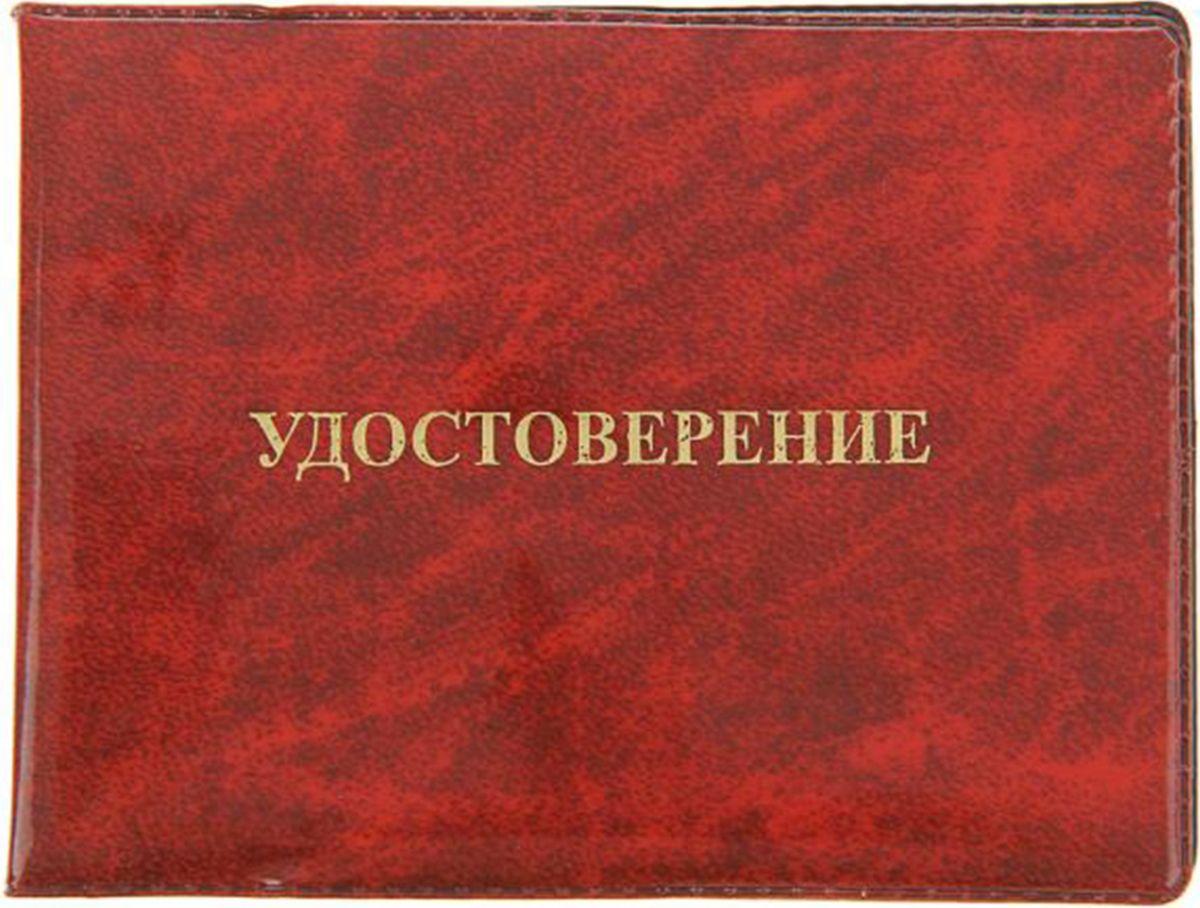 Обложка для удостоверения Mitya Veselkov, цвет: красный. 12675491267549Обложка для удостоверения Mitya Veselkov выполнена из ПВХ. Края дополнены прострочкой. Внутри у модели широкие удобные поля.