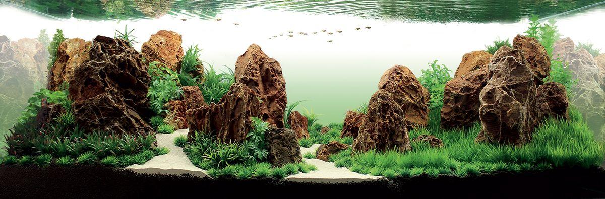 Набор декораций для аквариума ArtUniq Заповедник, 150 x 50 x 50 смART-4116860Набор декорация для аквариума ArtUniq Заповедник поможет вам создать из своего аквариума произведение искусства. Содержит около девяти видов растений. Практичный элемент впишется в любой подводный пейзаж, превращая обычный аквариум в притягивающий внимание предмет интерьера. Каждый, кто увидит его, удивится резвящимся в нем рыбкам, которым больше никогда не будет скучно. Все компоненты этого украшения сделаны из химически нейтрального материала. Он не меняет состав и основные параметры воды, постоянно оставаясь безопасным для обитателей аквариума. Благодаря декорациям ArtUniq вы сможете смоделировать потрясающий пейзаж на дне вашего аквариума или террариума. Общий размер декорации (в собранном виде): 150 х 50 х 50 см. Размер растений: 2,5-21 см.