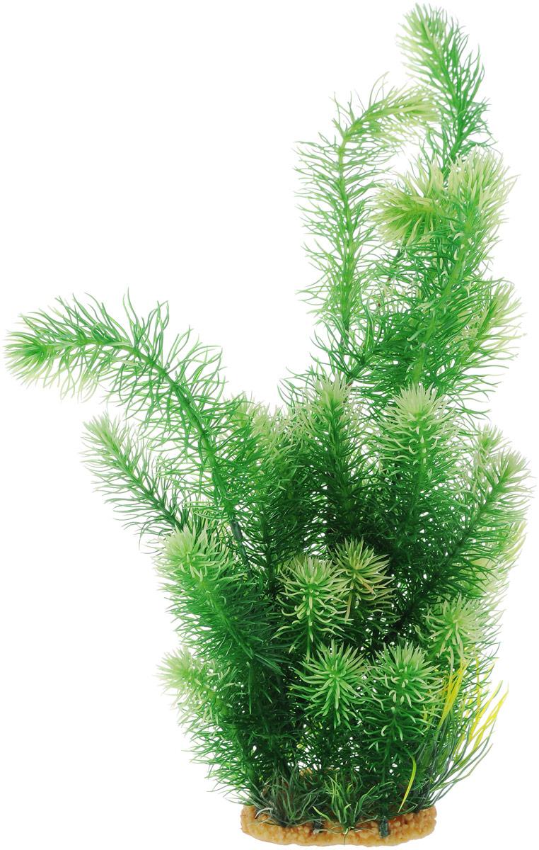 Растение для аквариума ArtUniq Погостемон эректус, высота 38 смART-1160570Декорация для аквариума ArtUniq Погостемон эректус, выполненная из высококачественного нетоксичного пластика, станет прекрасным украшением вашего аквариума. Декорация абсолютно безопасна, нейтральна к водному балансу, устойчива к истиранию краски, подходит как для пресноводного, так и для морского аквариума. Благодаря декорациям ArtUniq вы сможете смоделировать потрясающий пейзаж на дне вашего аквариума или террариума.