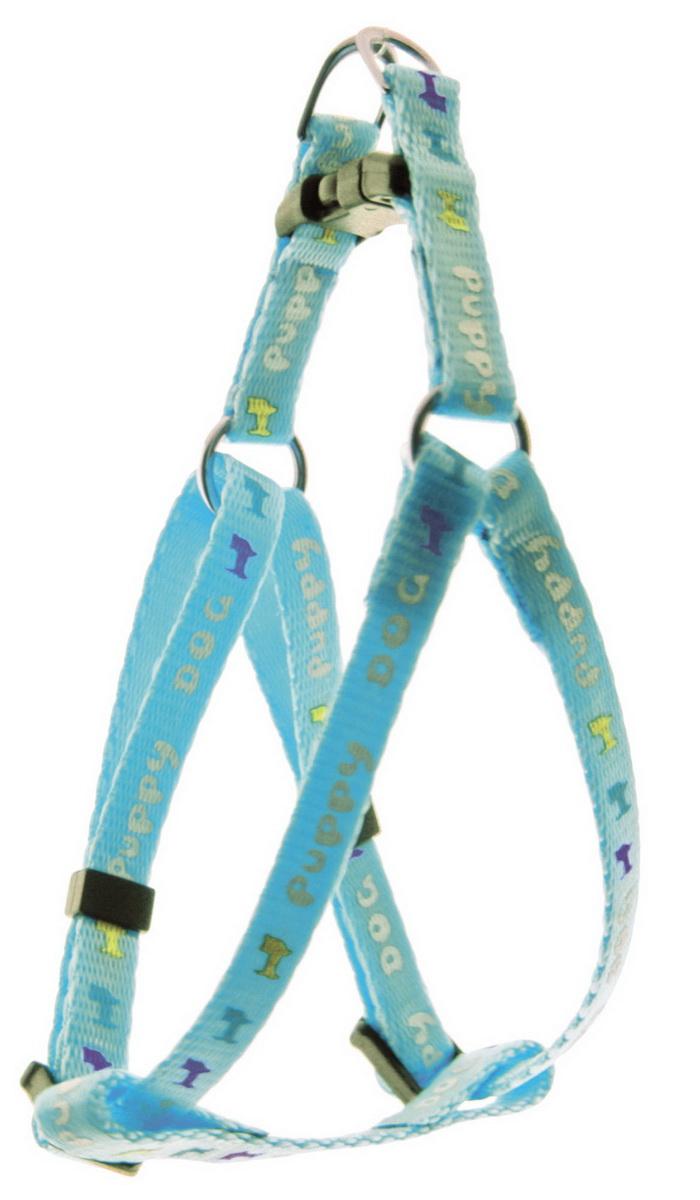 Шлейка для мини-собак Dezzie, цвет: голубой, ширина 0,8 см, обхват груди 22-29 см5609558Шлейка для собак. Стильная и красивая амуниция. Имеет эффектный внешний вид.