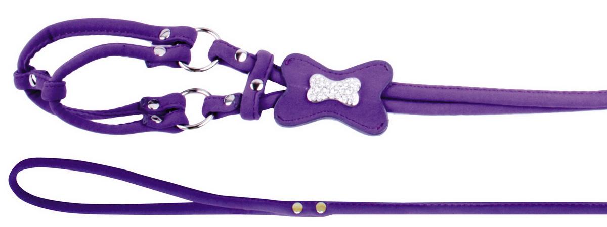 Шлейка для собак Dezzie, обхват шеи 25 см, обхват груди 31 см. Размер XS. 56241295624129Комплект для собак. Стильная и красивая амуниция для собак, украшенная стразами. Имеет эффектный внешний вид и возможность регулировки объема груди.