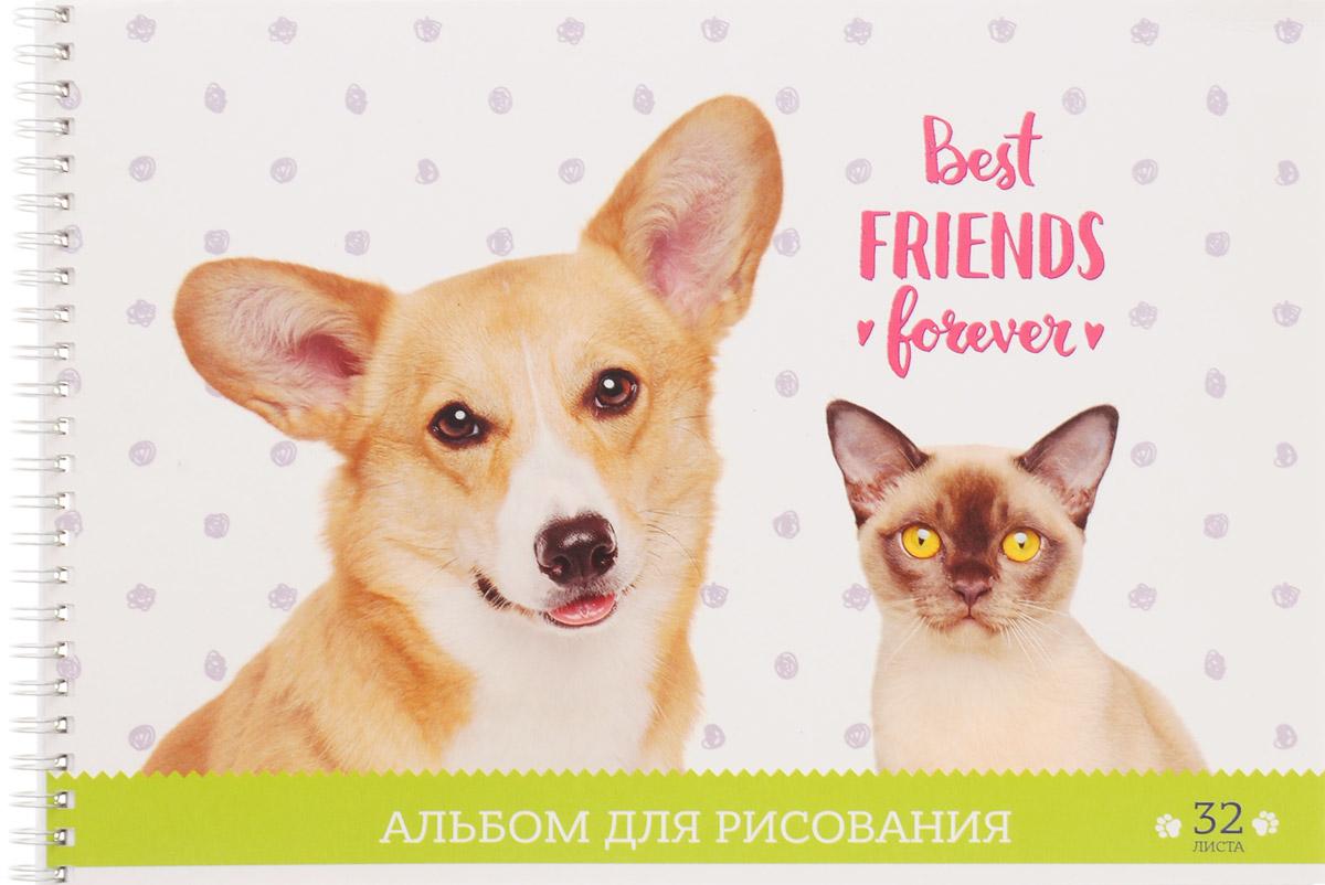 ArtSpace Альбом для рисования Best Friends Forever 32 листаА32спВЛ_9169_белый,зеленыйАльбом ArtSpace Best Friends Forever подходит для рисования различными типами красок, фломастерами, цветными и черно-графитными карандашами, гелевыми ручками. Он имеет формат А4, а его обложка изготовлена из импортного мелованного картона с красивыми изображениями кошки и собаки. Такой альбом для рисования будет вдохновлять вашего ребенка на творческий процесс. Внутренний блок состоит из 32 листов офсетной бумаги на спирали. Занимаясь изобразительным творчеством, ребенок тренирует мелкую моторику рук, становится более усидчивым и спокойным.