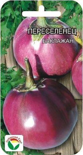 Семена Сибирский сад Баклажан. ПереселенецBP-00000180Среднеранний сорт с крупными до 1кг. Шаровидными плодами. Куст низкорослый до 50см. Плоды фиолетовые, мякоть зеленовато-белая, плотная, малосемянная.