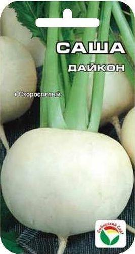 Семена Сибирский сад Дайкон. Саша, 1 гBP-00000194Ультраскороспелый сорт дайкона (японской редьки) с вегетационным периодом на уровне поздних редисов. За 35-40 дней формирует овально-округлые корнеплоды массой 200-400 грамм с белой сочной, хрустящей мякотью, генетически без горечи и остроты. Корнеплоды богаты витаминами, используются в свежем виде. Сорт устойчив к бактериозу и преждевременному стеблеванию. Пригоден для возделывания как в открытом грунте, так и под укрытиями. Листья можно использовать как салатную зелень. За сезон можно вырастить два-три урожая. Посев в открытый грунт с конца июня до середины августа по схеме 50*25см, уборка урожая сентябрь-октябрь.