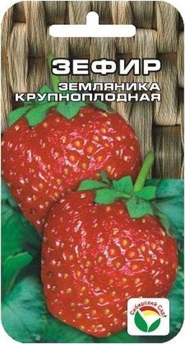 Семена Сибирский сад Клубника. Зефир, 10 штBP-00000233Высокоурожайный сорт суперраннего срока созревания. Ягоды крупные, массой 35-40 г, очень вкусные. По легкости, воздушности структуры и вкусу ягод сорт абсолютно соответствует своему названию. Сорт устойчив к болезням, может расти в полутени, крайне неприхотлив. Урожай отдает сразу весь. Ягоды высоко подняты над землей. Размножается сорт усами и делением куста. Внимание! Семена клубники туговсхожие! Необходимо строго соблюдать посевной режим! Всходы чаще всего появляются неравномерно в течение 30-40 дней (до 60 дней). Сеять семена на рассаду можно в различное время года, однако лучшее время для посева - зима (конец января - март). Подготовка почвенной смеси заключается в следующем: 3 части песка перемешивают с 5 частями рассыпчатого перегноя и прогревают в духовом шкафу 3-4 часа при температуре 90-100°С. Семена аккуратно раскладывают на поверхности слегка уплотненного и увлажненного грунта, накрывают слоем снега толщиной 5 см, сверху горшочки закрывают...
