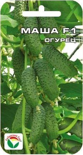 Семена Сибирский сад Огурец. Маша, 5 штBP-00000306Великолепный суперранний самоопыляемый гибрид с пучковым формированием плодов в узле. Растение мощное, сильнорослое, чрезвычайно урожайное. При достаточном питании и уходе формирует до 6-7 плодов в одном узле. Зеленцы однородные, цилиндрической формы, темно-зеленые, крупнобугорчатые, плотной консистенции, генетически без горечи, Идеальны для всех видов переработки и для употребления в свежем виде. Гибрид устойчив к кладоспориозу. мучнистой росе и вирусу огуречной мозаики. Отличается повышенной устойчивостью к пониженным температурам Выращивается в стеклянных и пленочных теплицах и в открытом грунте. Огурцы выращивают, высевая семенами в грунт или через рассаду. Рассаду высаживают в грунт, когда минует угроза весенних заморозков. Семенами огурец высевают в прогретую почву на глубину 1,5-2 см. Посевы укрывают. Оптимальная температура почвы для прорастания семян 20-23°С. Платность посадки 3 растения на 1 м2. Растение можно выращивать горизонтальным и ...