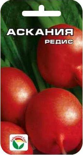Семена Сибирский сад Редис. Аскания, 2 гBP-00000370Гулливер среди редисов! Скороспелый (срок созревания 17-23 дня), с крупными малиновыми корнеплодами более 10 см в диаметре. Не склонен к образованию пустот. Посев производят с ранней весны до конца августа в открытый грунт на глубину 1-2 см по схеме 7х7 см. Вес: 2 г.