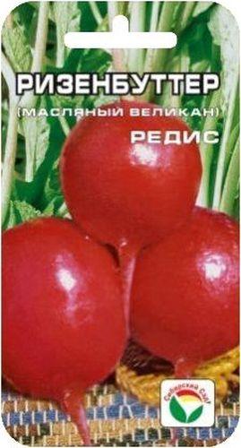 Семена Сибирский сад Редис. Ризенбуттер, 2 гBP-00000390Один из лучших ранних рыночных сортов редиса, с необычайно крупным красным корнеплодом, округло-вытянутой формы, высоких вкусовых качеств. Мякоть белая, сочная, нежная, вкусная, не дрябнет. Кожица корнеплода ярко-малиновая, с глянцевым маслянистым блеском. Диаметр корнеплода достигает до 8 см. Пригоден для посева в ранневесенние и летние сроки. Для ускорения процесса всхожести семян, оздоровления растений, улучшения завязываемости плодов рекомендуется пользоваться специально разработанными стимуляторами роста и развития растений. Вес: 2 г.