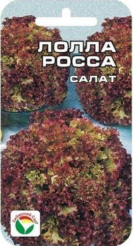 Семена Сибирский сад Салат. Лолла РоссаBP-00000405Популярный раннеспелый сорт для открытого грунта. Листья нежные, хрустящие, красновато-розового цвета. Идеально подходят для салатов и украшения столовых блюд.