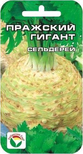 Семена Сибирский сад Сельдерей. Пражский гигант корневойBP-00000422Корнеплоды крупные,реповидной формы.Мякоть белая, нежная.Высокая ароматичность.