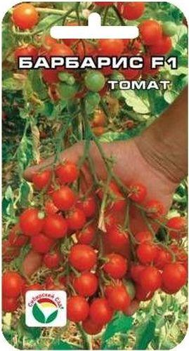 Семена Сибирский сад Томат. Барбарис, 15 штBP-00000440Вишневовидный (черри) гибрид раннего срока созревания. Очень понравится любителям оригинальных, необычных томатов. Растение индетерминантное, высотой до 2 метров, формирует от трех до пяти мощных кистей с огромным количеством (до 100 шт) вишневовидных мелких плодов массой 10-12 г. Томаты очень сладкие (содержание сахаров до 8%), при этом плотные и мясистые. Пригодны для употребления в свежем виде, украшения блюд, цельноплодного консервирования. Куст необыкновенно декоративен, сделает вашу теплицу красивой и нарядной. Гибрид рекомендуется для выращивания в защищенном грунте. Посев на рассаду производят за 50-60 дней до высадки растений на постоянное место. Оптимальная постоянная температура прорастания семян 23-25°С. При высадке в грунт на 1 м2 размещают 3-4 растения. Сорт хорошо реагирует на полив и подкормки комплексными минеральными удобрениями. Выращивается в один стебель с подвязкой и пасынкованием. Для ускорения процесса всхожести семян,...