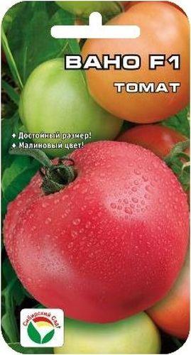 Семена Сибирский сад Томат. Вано, 15 штBP-00000462Ранний гибрид с крупными красивыми малиновыми плодами отличных вкусовых и товарных качеств. Период от всходов до созревания 100-105 дней. Растение среднеоблиственное, детерминантного типа, вы сотой 110-130 см. Первая кисть закладывается рано, над 5-6 листом, последующие через 1-2 листа. В кисти 5-6 округлых тяжеловесных плодов массой 250-300 г интенсивно-малиновой окраски. Томаты вкусные, плотные, но не жесткие, с хорошей транспортабельностью и способностью к дозреванию без потери товарных качеств. Выход стандартных плодов 99%, урожайность за первых 2 сбора 8,7 кг/м2, потенциальная урожайность до 20 кг/м2. Гибрид устойчив к альтернаирозу и вирусу табачной мозаики. Рекомендуется для выращивания в открытом и защищенном грунте. Посев на рассаду производят за 50-60 дней до высадки растений на постоянное место. При высадке в грунт на 1 м2 размещают 3 растения. Гибрид отзывчив на внесение удобрений и технологию возделывания. Выращивается в 1-2 стебля с ...