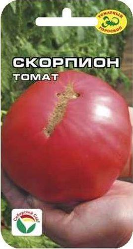 Семена Сибирский сад Томат. СкорпионBP-00000662Среднеранний. Растение высотой более 1,5 м. Огромные плоскоокрыглые плоды массой 800 гр. Цвет варьирует от бледно-розового до интенсивно-малинового. Производитель: Сибирский Сад