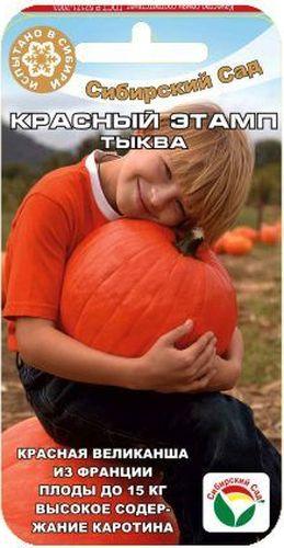 Семена Сибирский сад Тыква. Красный этампBP-00000727Среднепоздний сорт. Растение длинноплетистое. Плоды плоско-округлые до 15 кг, красно-оранжевой окраски. Период хранения плодов при комнатной температуре до 5 месяцев. Выращивается как рассадным способом, так и прямым посевом в грунт. Посев на рассаду - в апреле, высадка в грунт - в мае – июне. Посев непосредственно в грунт в конце мая – июне. Хорошо отзывается на внесение органических удобрений. Схема посадки 60x60 см. Предпочитает нейтральную, хорошо дренированную почву.