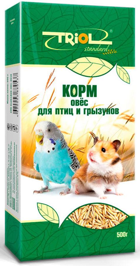 Корм Тriol Standard для птиц и грызунов, 500 гКф-01200Овес - идеален для здорового питания птиц и грызунов. Такой корм обогащен витаминами, необходимыми для правильного развития пернатых питомцев и мелких домашних животных. Основной корм для грызунов и птиц из овса - это сбалансированное питание для домашних любимцев, разработанное компанией Triol для максимального обеспечения питомца полезными микроэлементами. Данный продукт состоит из исключительно натурального овса богатого на растительный белок, специальных аминокислот и микроэлементы, благодаря чему отлично подойдет для всех видов домашних грызунов и птиц. Данный продукт поможет обеспечит вашего любимца необходимым количеством питательных веществ для обеспечения здоровья - натуральным растительным лизином, витамином В и метионином. Кроме того корм предоставлен в сухом виде, в котором его предпочитают потреблять крупные попугаи и грызуны, однако его можно размочить для подачи другим птицам. Продукт поддается смешиванию с другими кормами и добавками, что поможет вам найти идеальный...