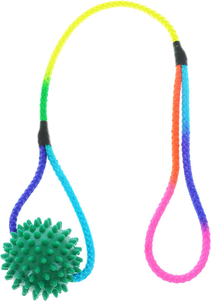 Игрушка для собак V.I.Pet Массажный мяч, на шнуре, цвет: зеленый, диаметр 5,5 см. 770650770650_зеленыйИгрушка для собак V.I.Pet Массажный мяч, изготовленная из экологически чистого пластика, предназначена для массажа и самомассажа рефлексогенных зон. Она имеет мягкие закругленные массажные шипы, эффективно массирующие и не травмирующие кожу. Сквозь мяч продет шнур. Игрушка не позволит скучать вашему питомцу ни дома, ни на улице. Диаметр: 5,5 см. Длина шнура: 50 см.
