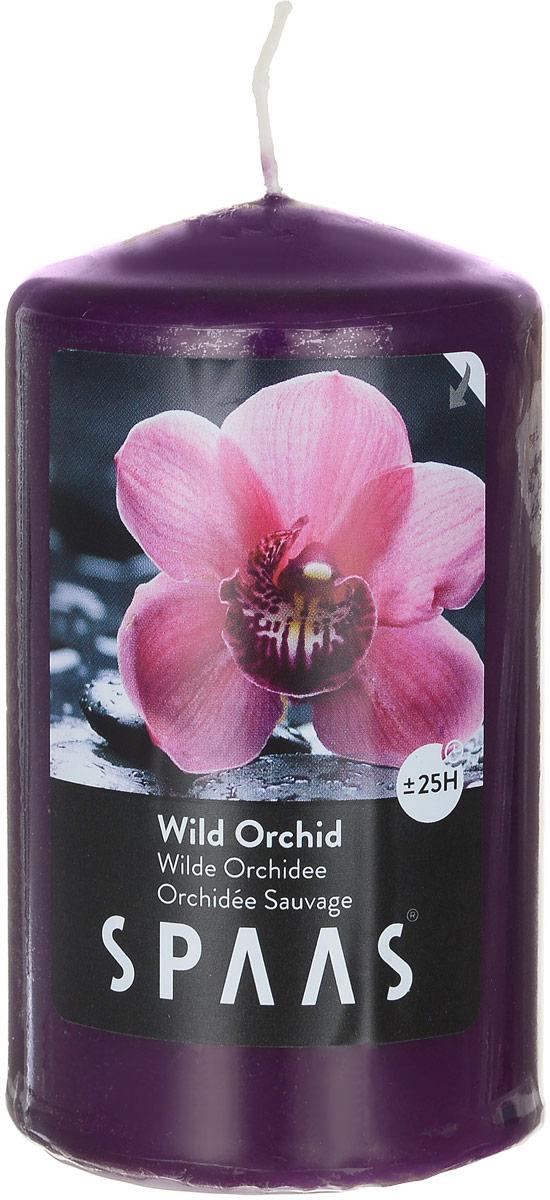 Свеча ароматизированная Spaas Дикая орхидея, высота 10 см0004500184Ароматизированная свеча Spaas Дикая орхидея изготовлена из парафина с добавлением натуральных красок и ароматизаторов, не выделяющих вредные вещества при горении. Фитиль выполнен из натурального хлопка. Оригинальная свеча с тонким, нежным ароматом добавит романтики в ваш дом и создаст неповторимую атмосферу уюта, тепла и нежности. Такая свеча не только поможет дополнить интерьер вашей комнаты, но и станет отличным подарком. Время горения: 25 ч.