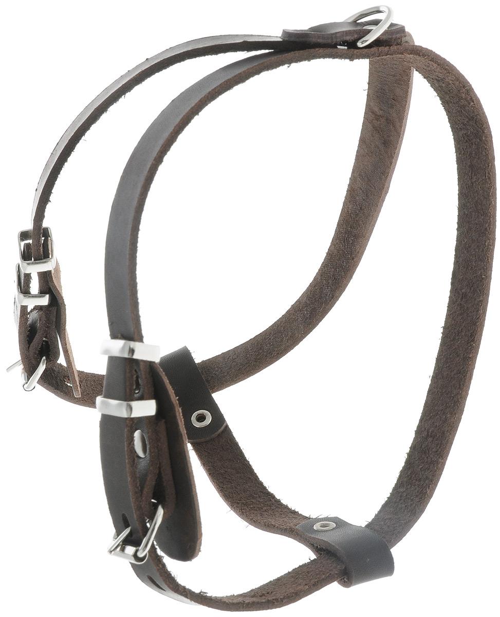 Шлейка для собак Каскад Классика, цвет: коричневый, ширина 1,5 см, обхват груди 43-51 см01001511кШлейка Каскад Классика, изготовленная из и натуральной кожи, подходит для собак малых пород. Крепкие металлические элементы делают ее надежной и долговечной. Шлейка - это альтернатива ошейнику. Правильно подобранная шлейка не стесняет движения питомца, не натирает кожу, поэтому животное чувствует себя в ней уверенно и комфортно. Изделие отличается высоким качеством, удобством и универсальностью. Размер регулируется при помощи пряжек, зафиксированных в одном из 4 отверстий. Обхват шеи: 36-44 см. Обхват груди: 39-47 см. Ширина шлейки: 1,5 см.