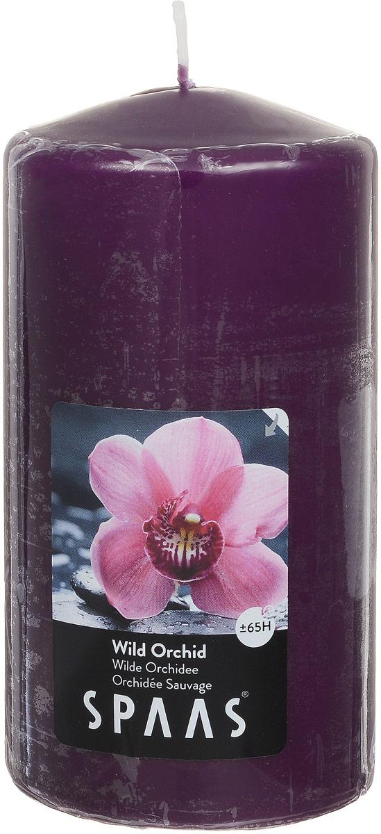 Свеча ароматизированная Spaas Дикая орхидея, высота 15 см0004800184Ароматизированная свеча Spaas Дикая орхидея изготовлена из парафина с добавлением натуральных красок и ароматизаторов, не выделяющих вредные вещества при горении. Фитиль выполнен из натурального хлопка. Оригинальная свеча с тонким, нежным ароматом добавит романтики в ваш дом и создаст неповторимую атмосферу уюта, тепла и нежности. Такая свеча не только поможет дополнить интерьер вашей комнаты, но и станет отличным подарком. Время горения: 70 ч.