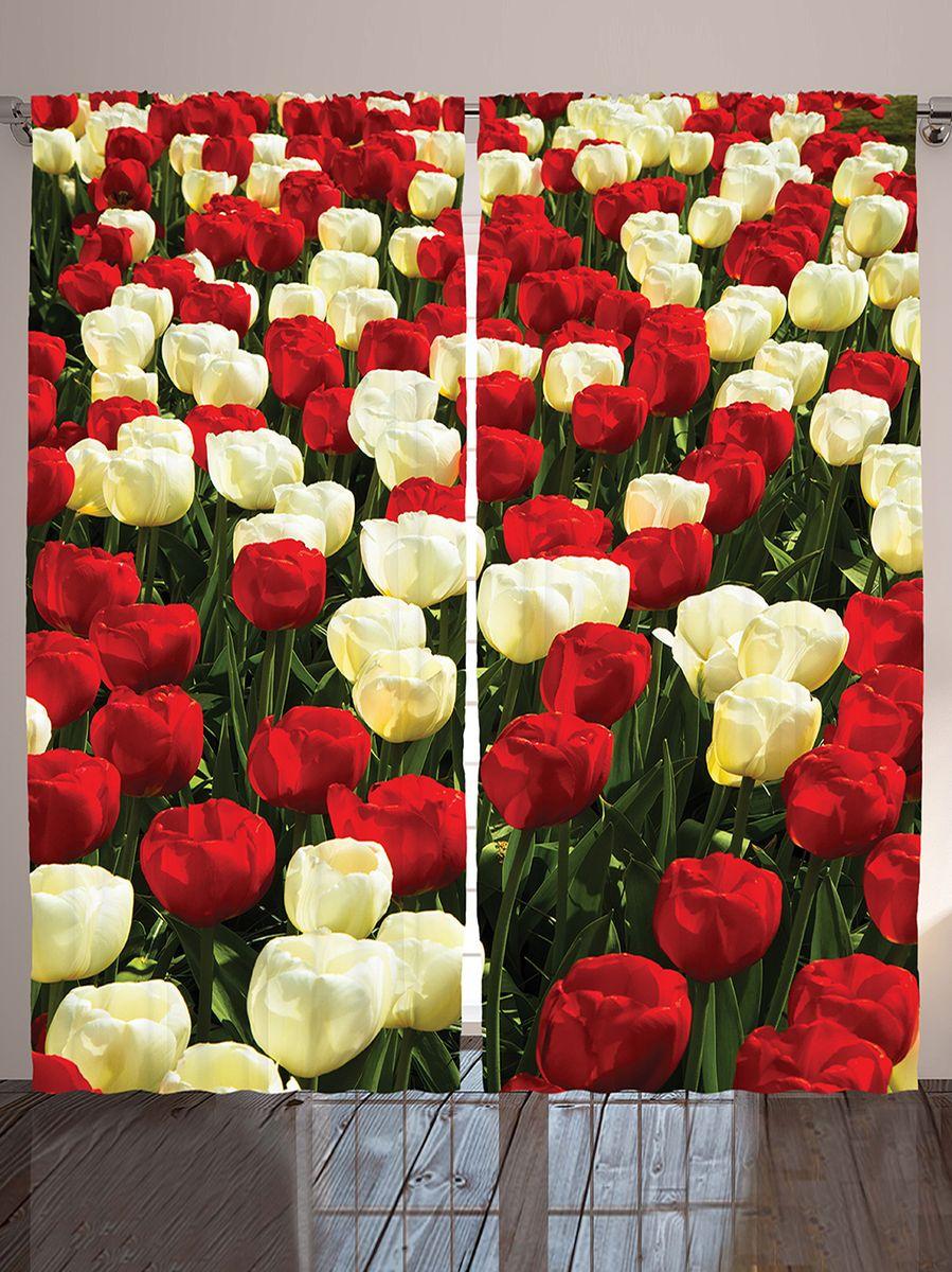 Комплект фотоштор Magic Lady Тюльпановое поле, на ленте, высота 265 см. шсг_10332шсг_10332Компания Сэмболь изготавливает шторы из высококачественного сатена (полиэстер 100%). При изготовлении используются специальные гипоаллергенные чернила для прямой печати по ткани, безопасные для человека и животных. Экологичность продукции Magic lady и безопасность для окружающей среды подтверждены сертификатом Oeko-Tex Standard 100. Крепление: крючки для крепления на шторной ленте (50 шт). Возможно крепление на трубу. Внимание! При нанесении сублимационной печати на ткань технологическим методом при температуре 240°С, возможно отклонение полученных размеров (указанных на этикетке и сайте) от стандартных на + - 3-5 см. Производитель старается максимально точно передать цвета изделия на фотографиях, однако искажения неизбежны и фактический цвет изделия может отличаться от воспринимаемого по фото. Обратите внимание! Шторы изготовлены из полиэстра сатенового переплетения, а не из сатина (хлопок). Размер одного полотна шторы: 145х265 см. В комплекте 2...