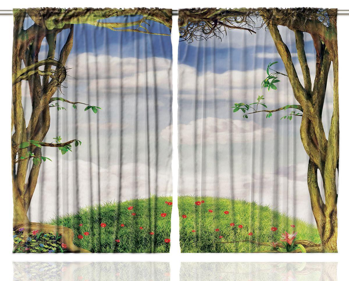 Комплект фотоштор Magic Lady Облака над холмом, на ленте, высота 265 см. шсг_1501шсг_1501Компания Сэмболь изготавливает шторы из высококачественного сатена (полиэстер 100%). При изготовлении используются специальные гипоаллергенные чернила для прямой печати по ткани, безопасные для человека и животных. Экологичность продукции Magic lady и безопасность для окружающей среды подтверждены сертификатом Oeko-Tex Standard 100. Крепление: крючки для крепления на шторной ленте (50 шт). Возможно крепление на трубу. Внимание! При нанесении сублимационной печати на ткань технологическим методом при температуре 240°С, возможно отклонение полученных размеров (указанных на этикетке и сайте) от стандартных на + - 3-5 см. Производитель старается максимально точно передать цвета изделия на фотографиях, однако искажения неизбежны и фактический цвет изделия может отличаться от воспринимаемого по фото. Обратите внимание! Шторы изготовлены из полиэстра сатенового переплетения, а не из сатина (хлопок). Размер одного полотна шторы: 145х265 см. В комплекте 2...